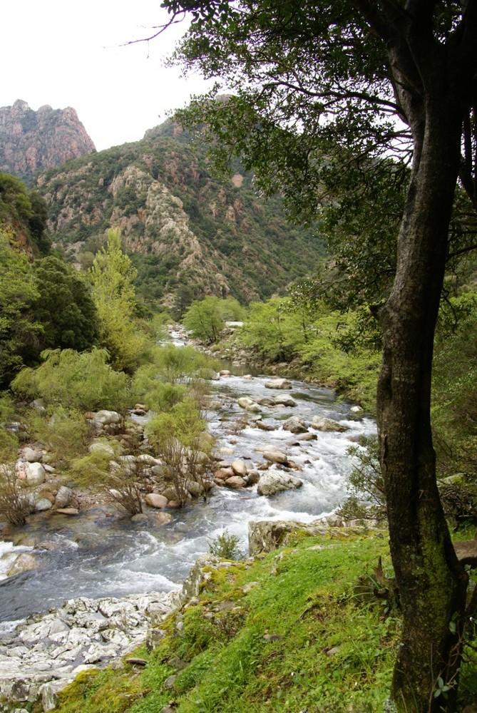 Une rivière torrentielle