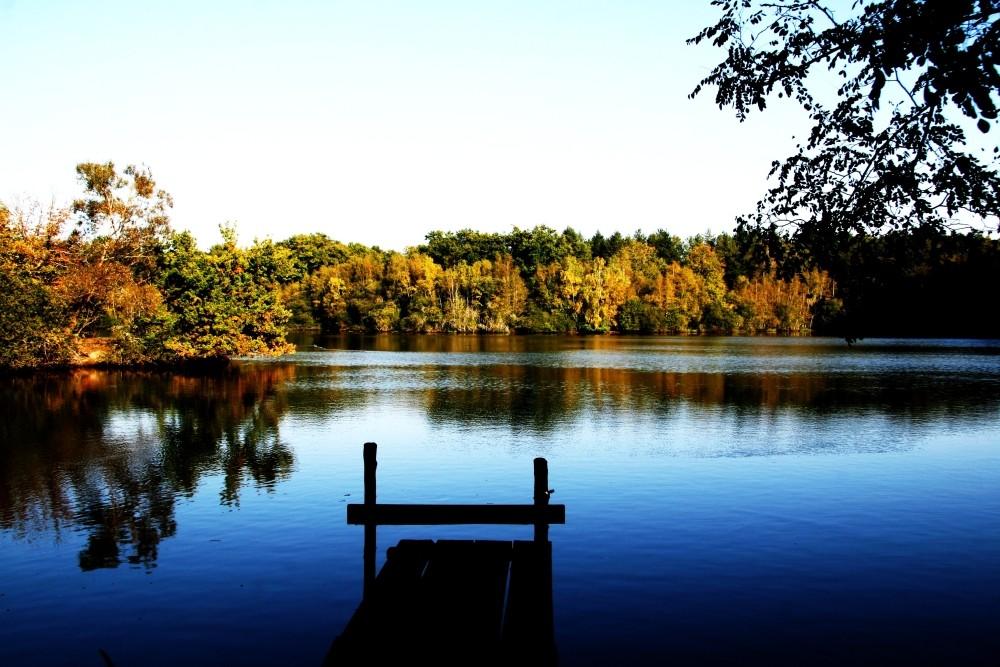 une simple journée d'automne