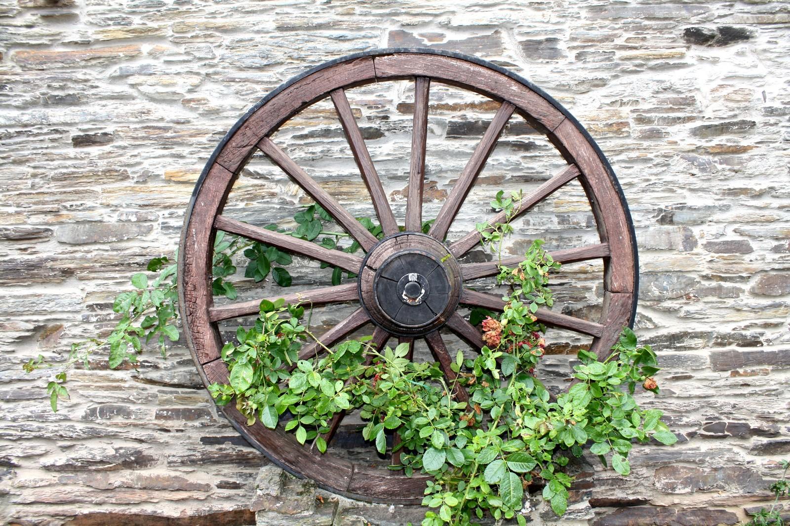une vieille roue