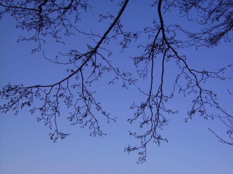 unerreichbares blau