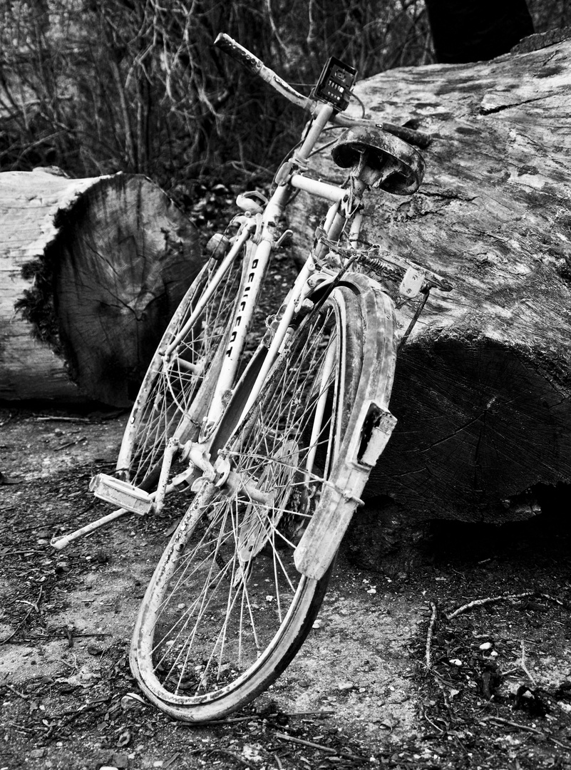 ungebrauchtes fahrrad