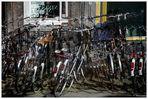 Ungefähr vierzehn Fahrräder...