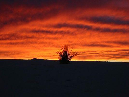 Unglaubliche Wüste