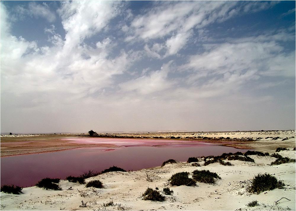 unglaublich...und ohne Chemie, das Rot entsteht durch Algen