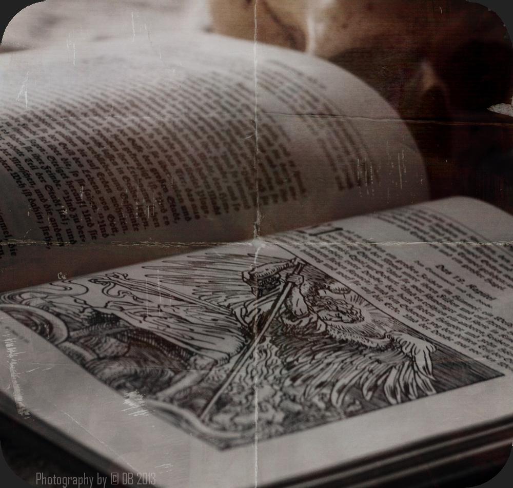 (Un)heilige Studien