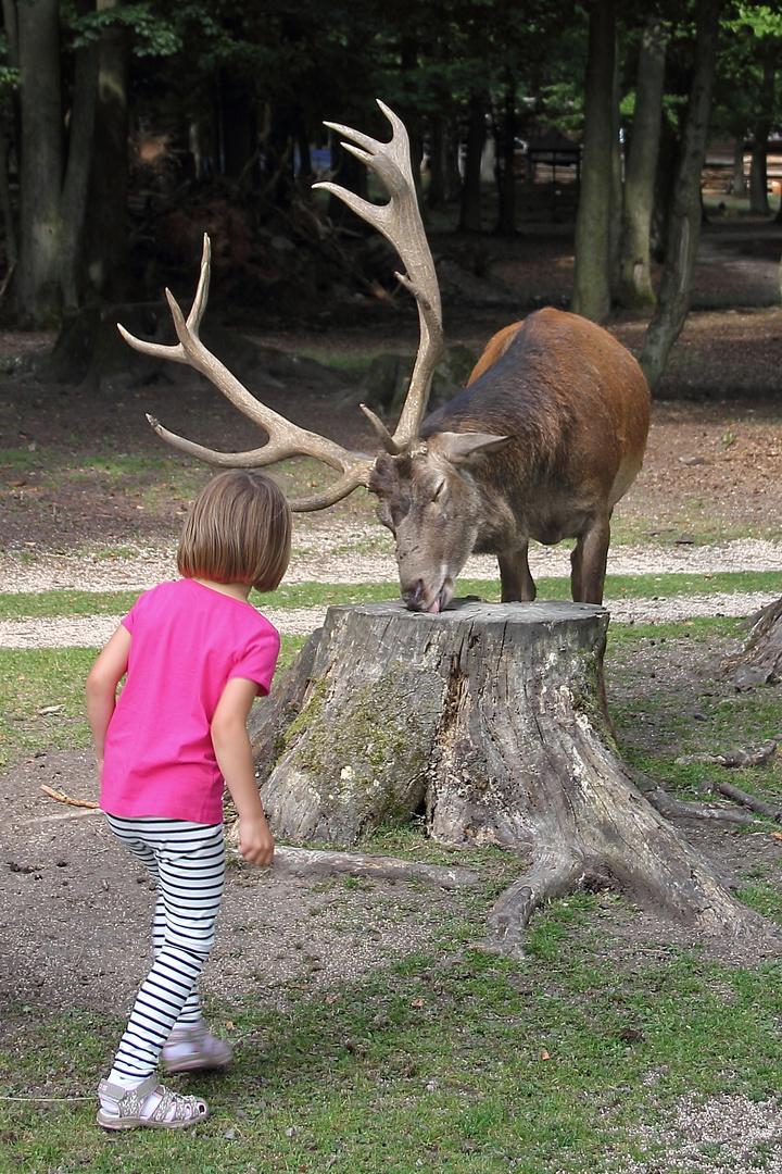 Unheimliche Begegnung der tierischen Art