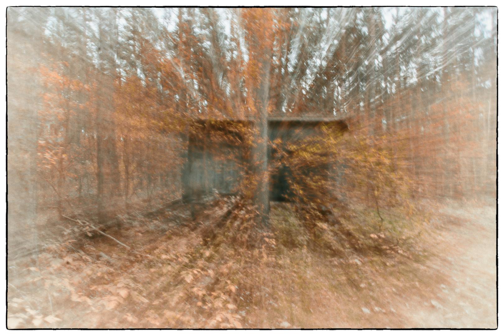 unheimliches aus dem Wald :-)