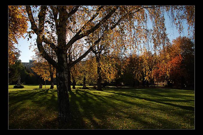Uni-Park
