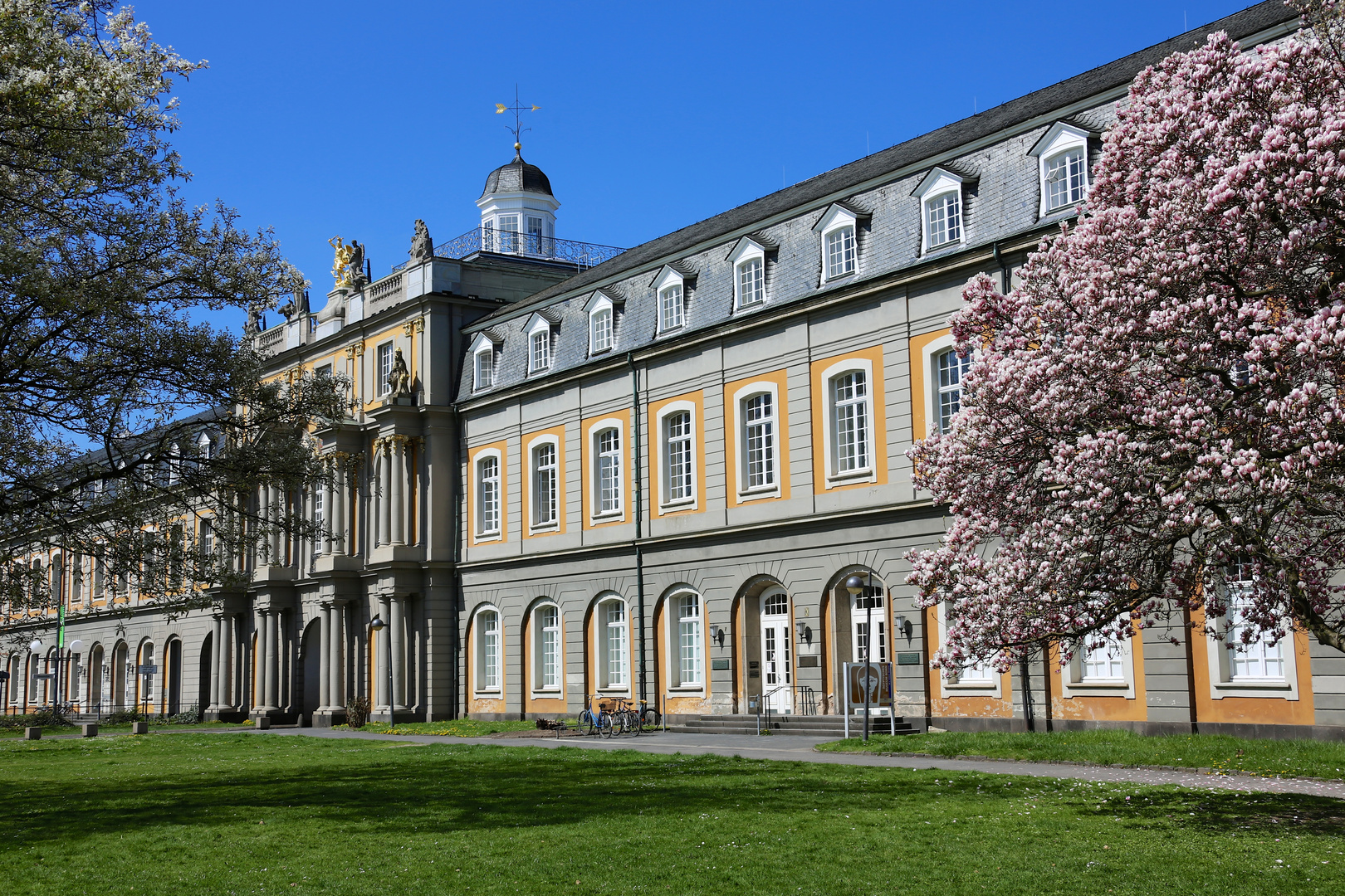 Unigebäude in der Frühlingssonne