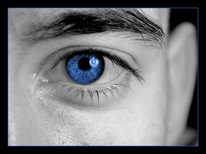 universe in an eye