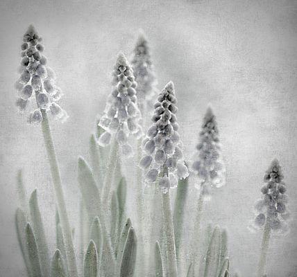 un.kühl