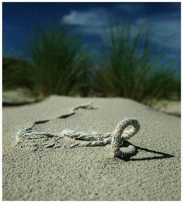 ... unscharfes strandgut ...2004-08-28 (f/3.8)