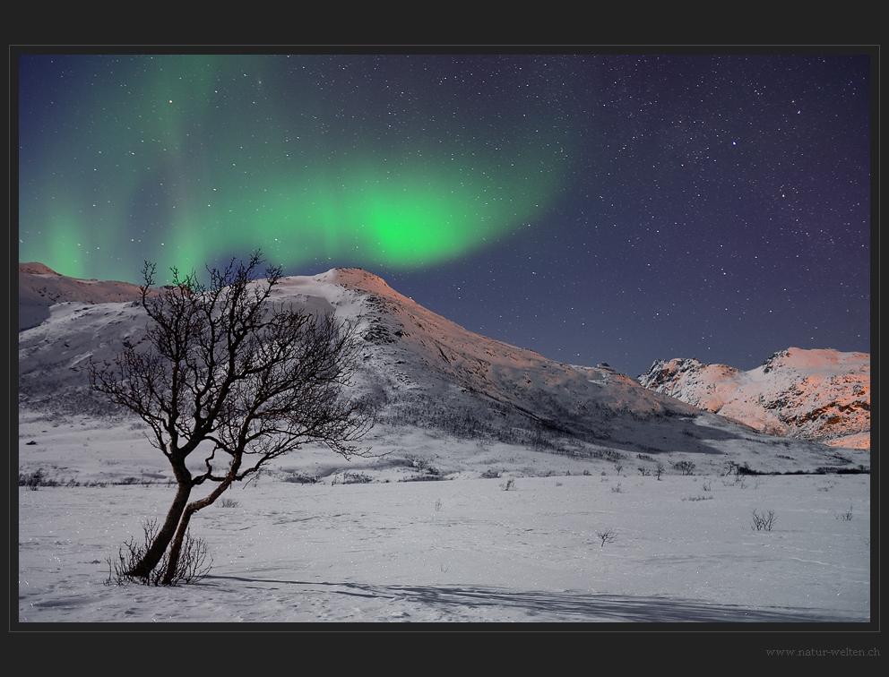 Unser erstes Nordlicht...