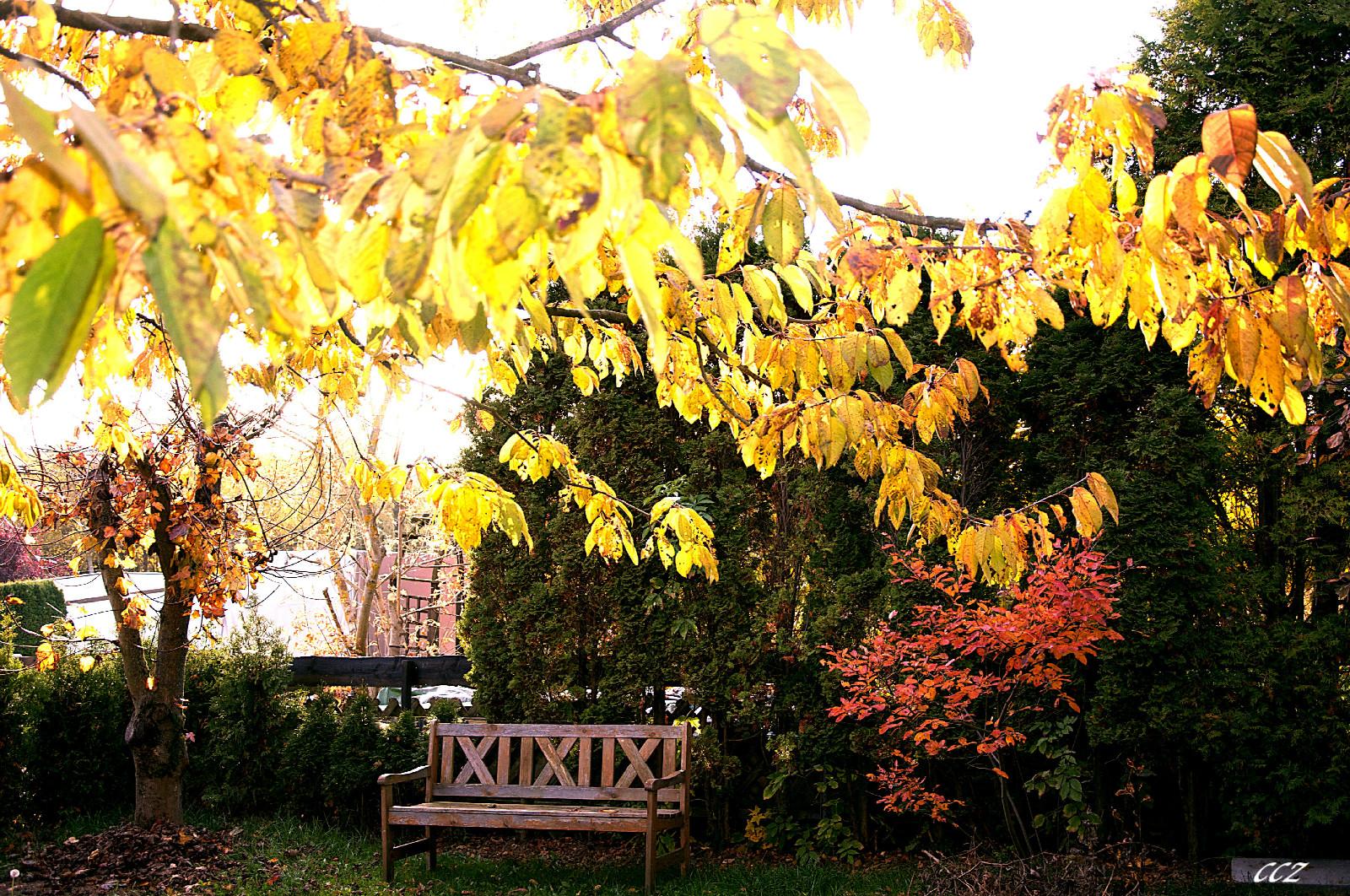 unser Garten Herbst