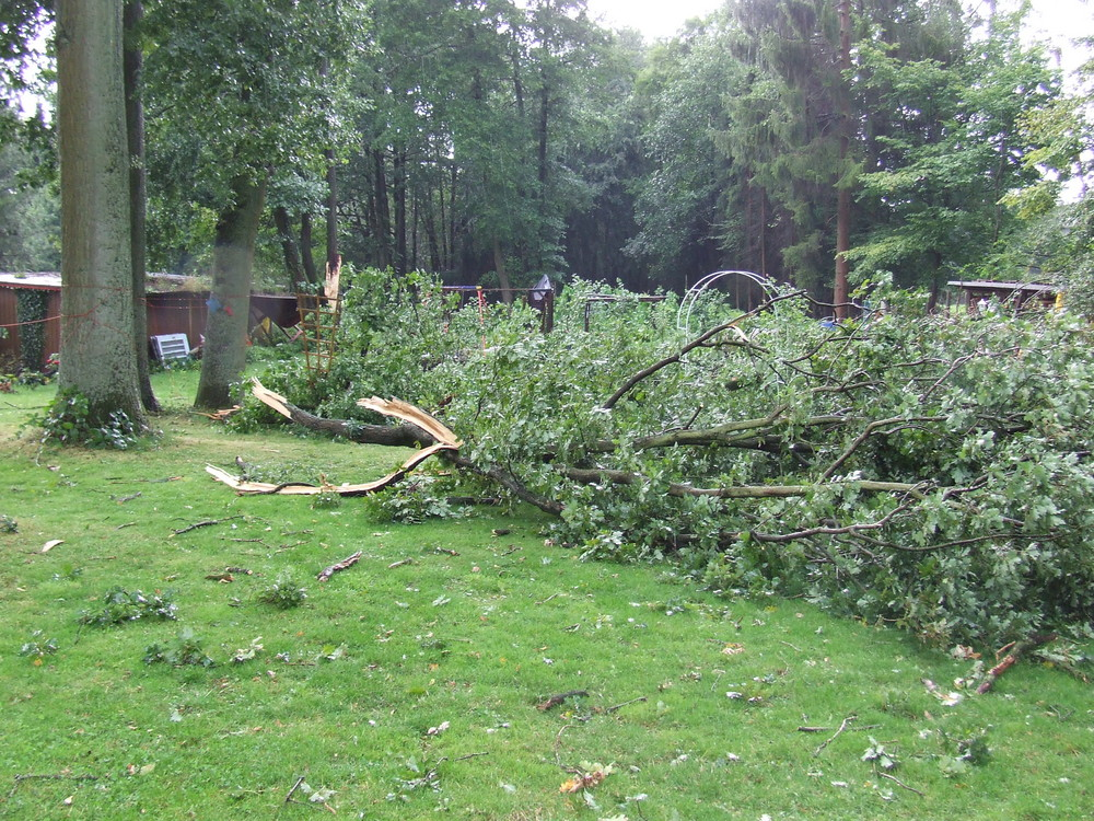 Unser Garten nach heftigem Unwetter >totale Verwüstung