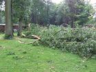 Unser Garten nach heftigem Unwetter >totale Verwüstung<