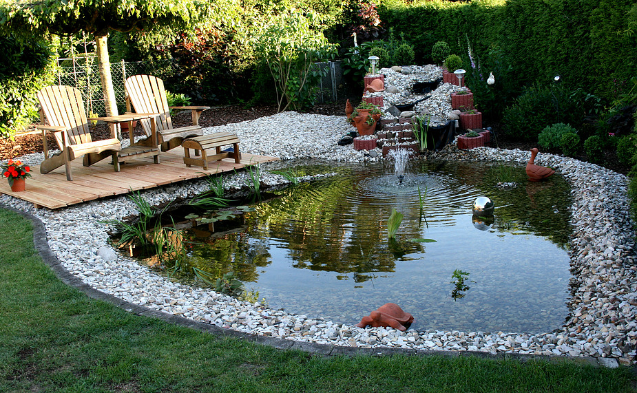 Unser Gartenteich Foto & Bild | landschaft, bach, fluss & see, see ...