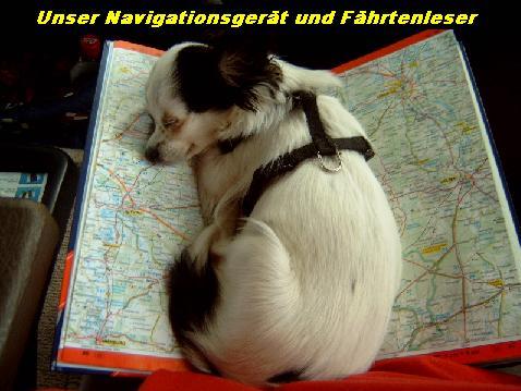 Unser Navigationsgerät