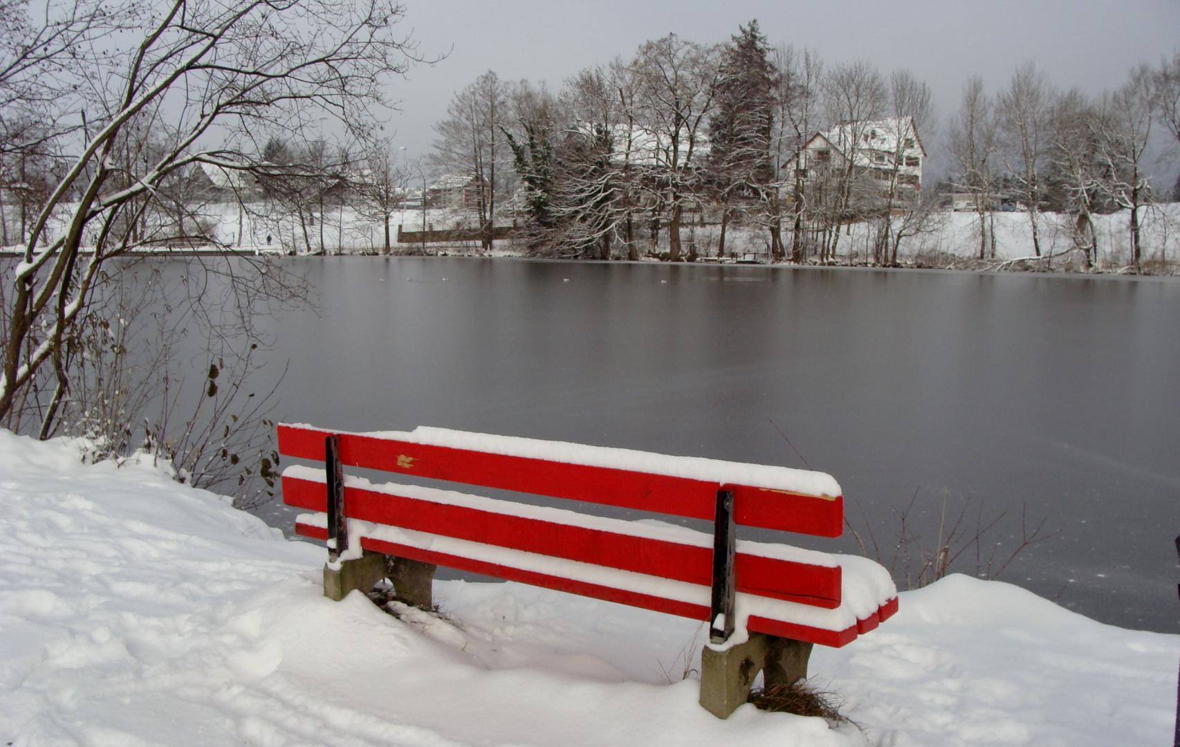Unser Teich / Nuestro estanque / Notre étang...03