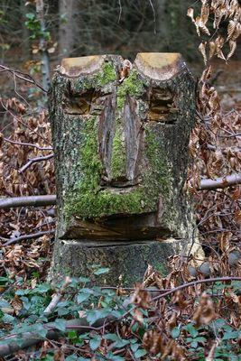 Unser Waldschrat