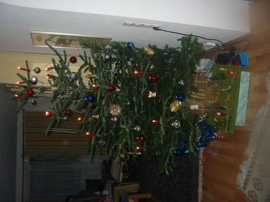 Unser Weihnachtsbaum Dez 2004