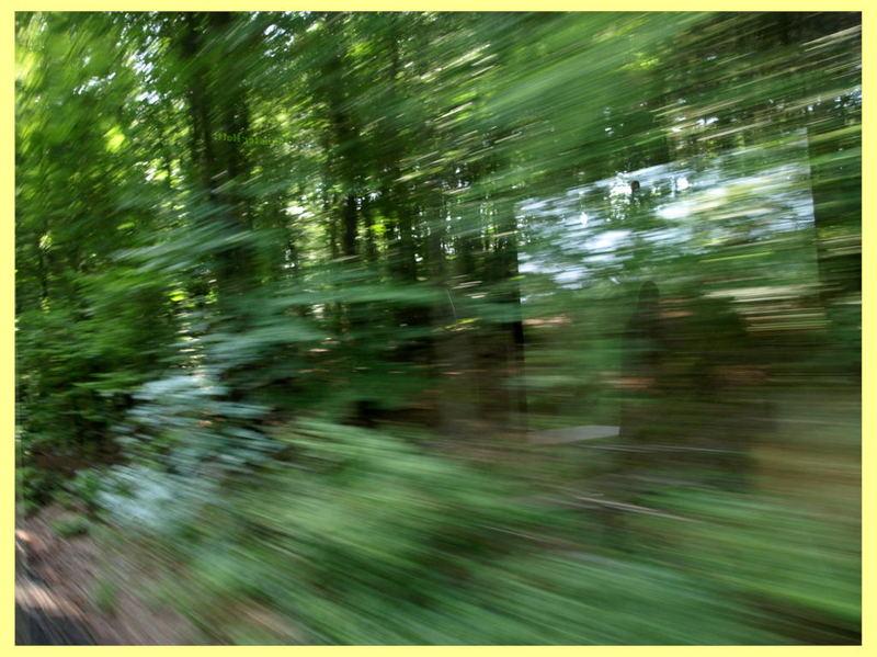 unsere bimmelbahn zeigt wie schnell sie fahren kann
