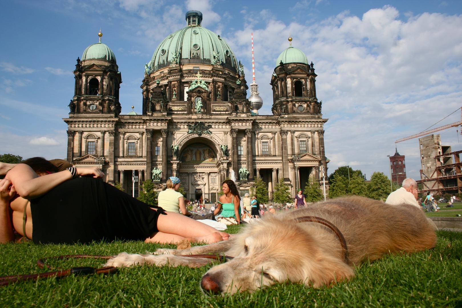 Unsere Elsa vor dem Berliner Dom