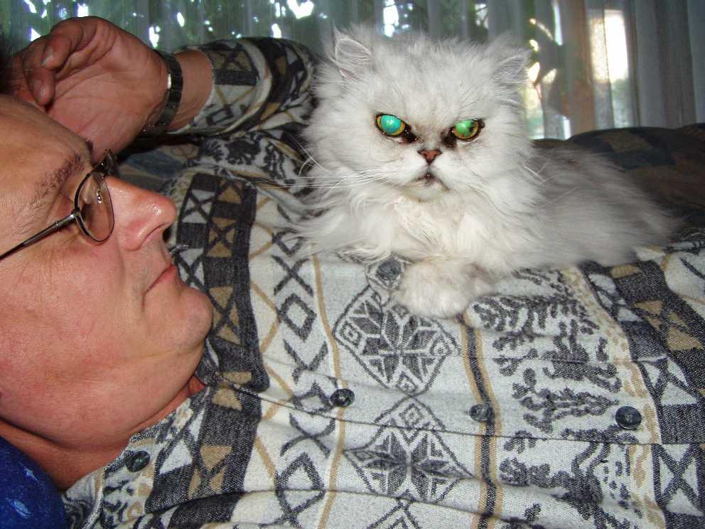 Unsere Katze ,,Kira,,