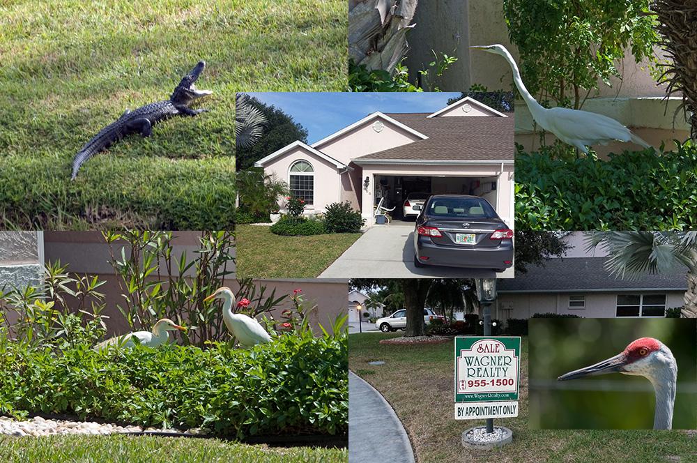 Unsere Nachbarn...