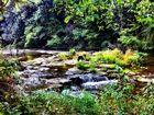Unten am Fluss..