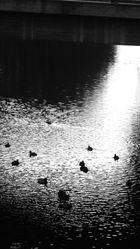 Unten am Fluss