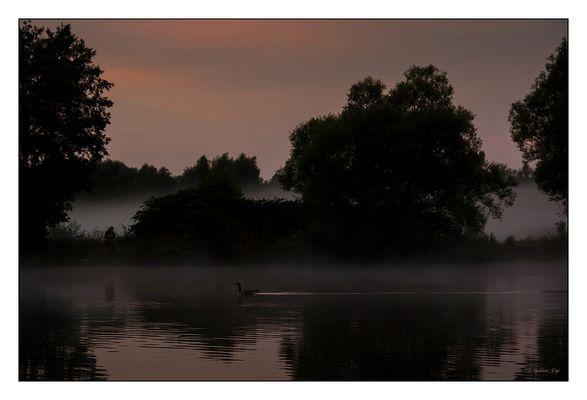 Unten am Fluss ....