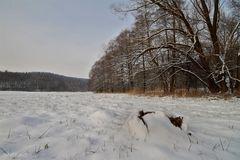 Unter dem Schnee ...