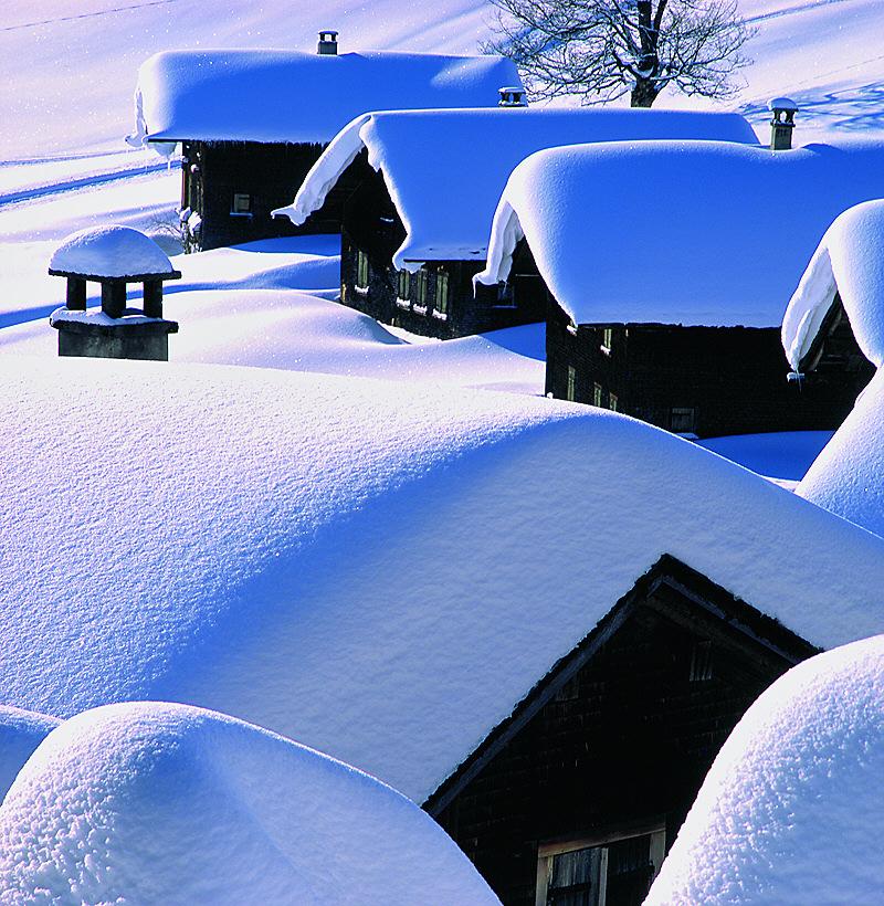 Unter dem Schnee geborgen...