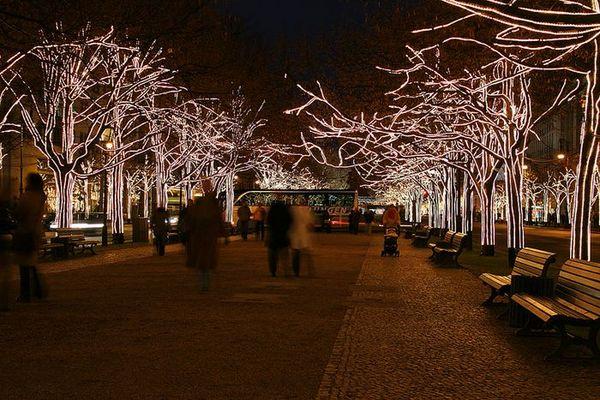 Unter den Linden im Advent