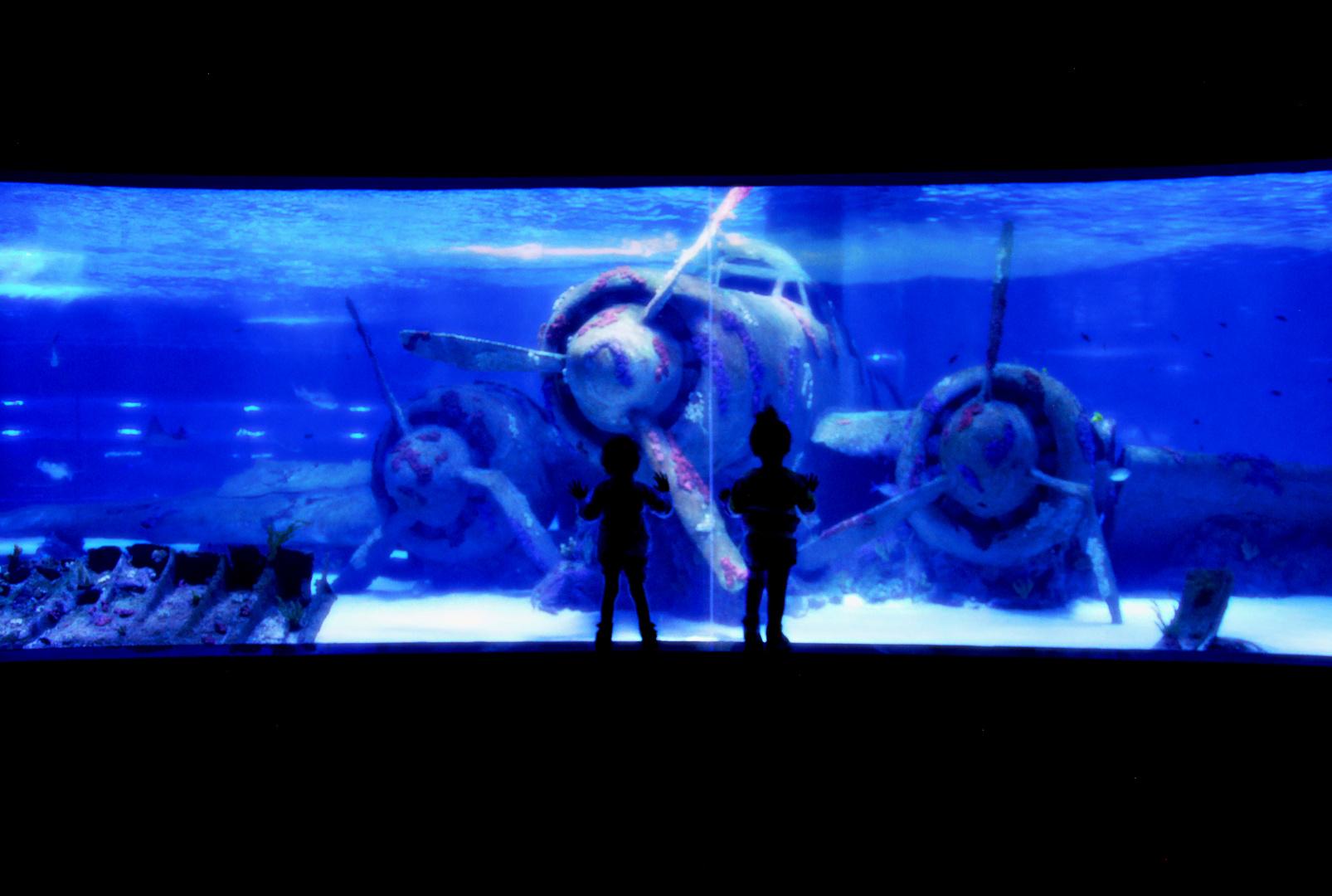Unter den Meer