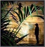 Unter Palmen...