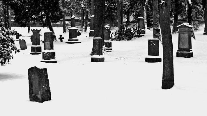 Unter Schnee begraben....