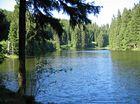 Unterer Grumbacher Teich