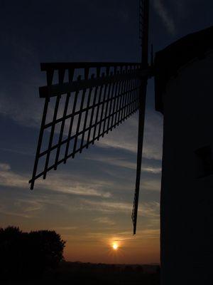 Untergehende Sonne in Krefeld