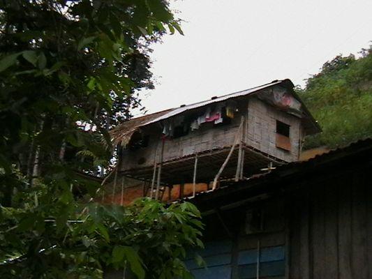 Unterkunft der Uran Assli in Malaysia