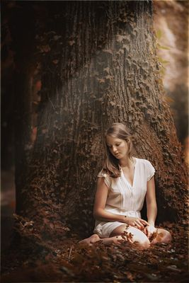 Unterm Märchenbaum
