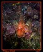 Unterwasser-3