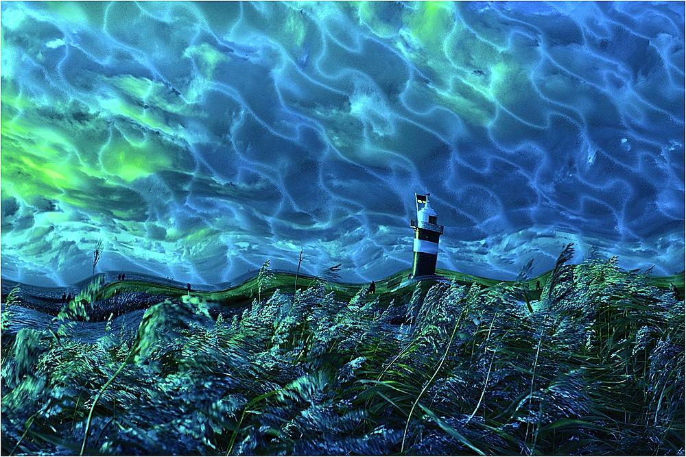 *Unterwasserwelt*