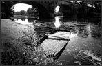 unterwegs ... am Ufer des Ognon - - Franche - Compté