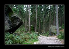 Unterwegs im Elbsandsteingebirge