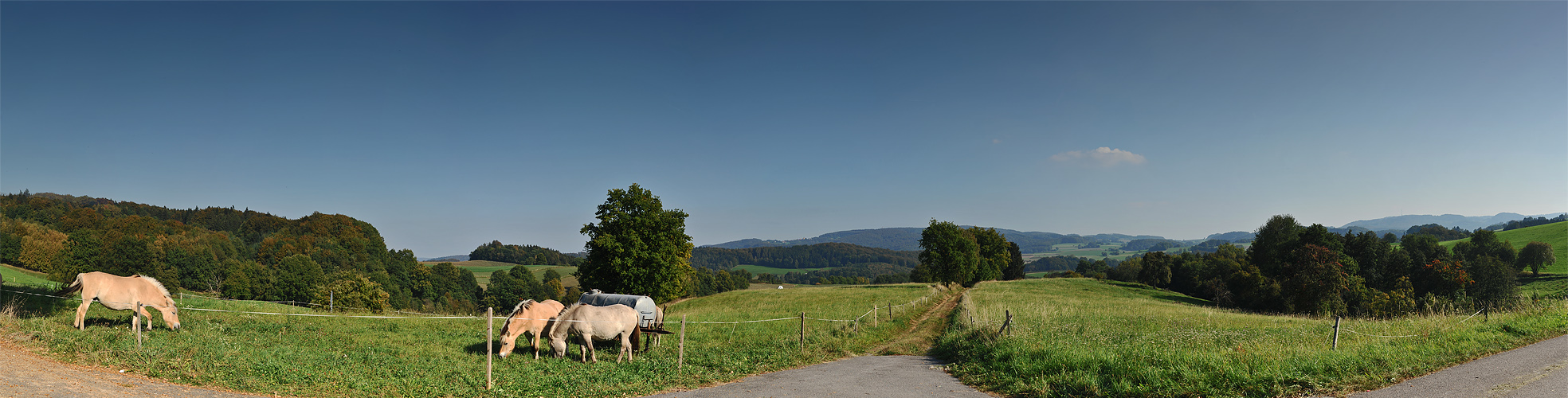 Unterwegs im Odenwald 3