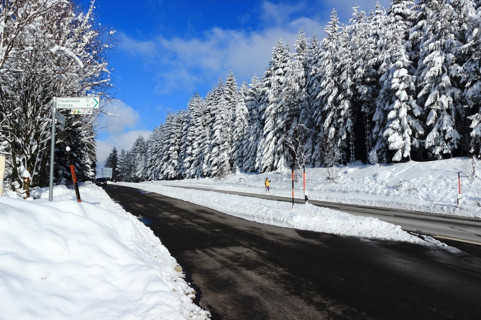 Unterweg's im Schwarzwald