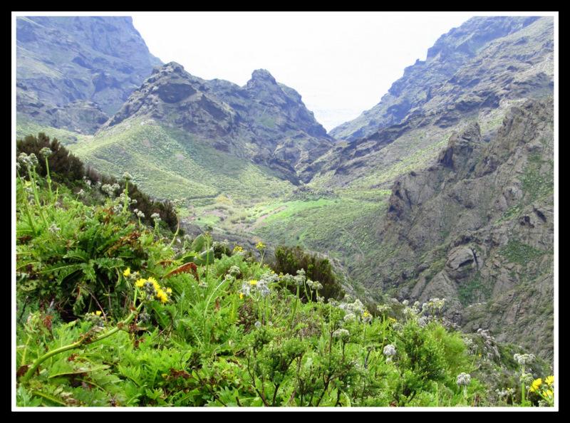 Unterwegs im Teide Gebirge