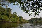 Unterwegs in Amazonien